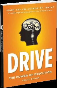 drive-book-steven-dayan